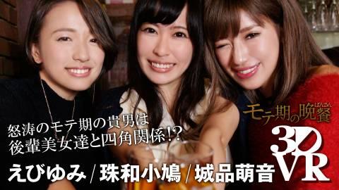 モテ期の晩餐 城品萌音/えびゆみ/珠和小鳩