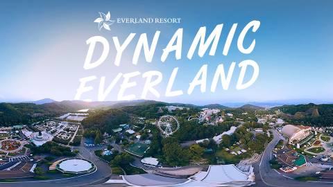 Dynamic Everland