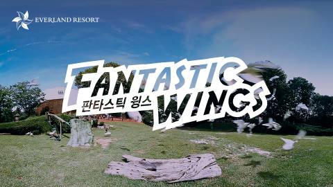 Fantastic Wings